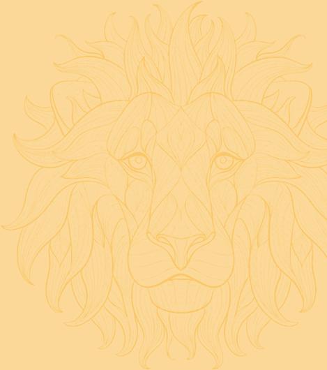 lion-replays-1
